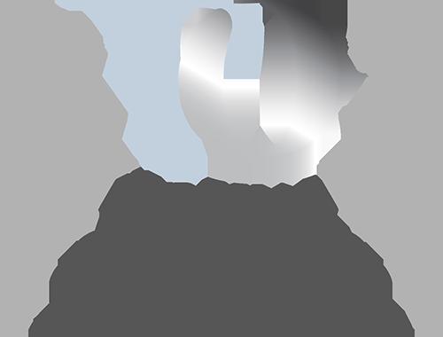 Virtual Organized